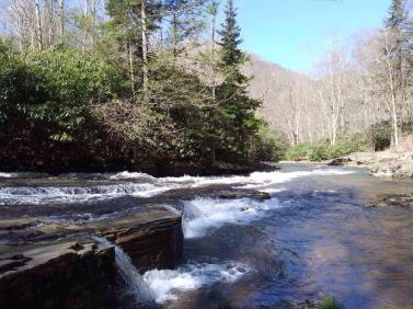Laurel Fork Photo Credit Todd Frye